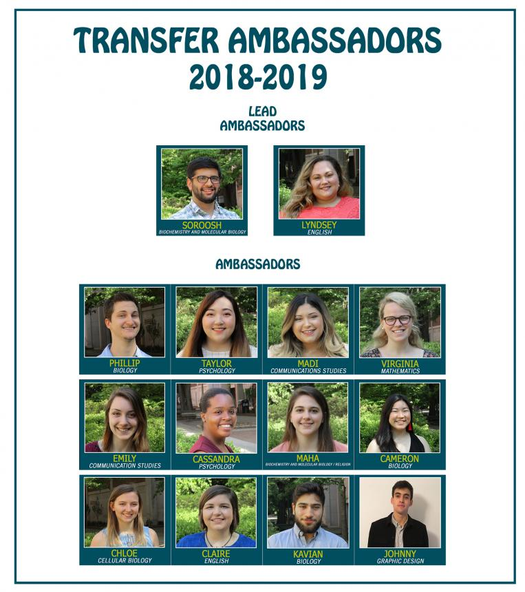 Pictures of Transfer Ambassadors